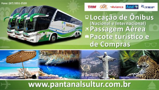 Arte - Pantanal Sul